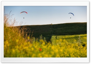 Paragliders In The Air HD Wide Wallpaper for Widescreen