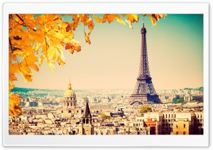 Paris - Autumn tree HD Wide Wallpaper for Widescreen