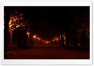 Park At Night HD Wide Wallpaper for Widescreen