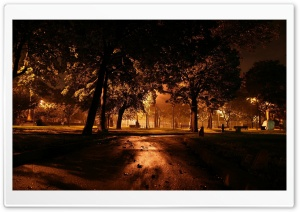 Park At Night City HD Wide Wallpaper for 4K UHD Widescreen desktop & smartphone