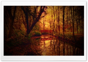 Park Bridge, Autumn HD Wide Wallpaper for Widescreen