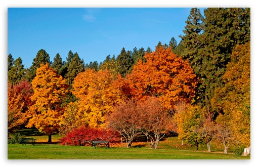Park Fall HD wallpaper for Standard 4:3 5:4 Fullscreen UXGA XGA SVGA QSXGA SXGA ; Wide 16:10 5:3 Widescreen WHXGA WQXGA WUXGA WXGA WGA ; HD 16:9 High Definition WQHD QWXGA 1080p 900p 720p QHD nHD ; Other 3:2 DVGA HVGA HQVGA devices ( Apple PowerBook G4 iPhone 4 3G 3GS iPod Touch ) ; Mobile VGA WVGA iPhone iPad PSP Phone - VGA QVGA Smartphone ( PocketPC GPS iPod Zune BlackBerry HTC Samsung LG Nokia Eten Asus ) WVGA WQVGA Smartphone ( HTC Samsung Sony Ericsson LG Vertu MIO ) HVGA Smartphone ( Apple iPhone iPod BlackBerry HTC Samsung Nokia ) Sony PSP Zune HD Zen ; Tablet 2 Android ; Dual 16:10 WHXGA WQXGA WUXGA WXGA ;