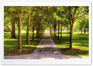 Park HDR HD Wide Wallpaper for Widescreen