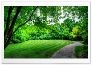 Park Landscape HD Wide Wallpaper for Widescreen