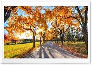 Park Landscape, Autumn HD Wide Wallpaper for 4K UHD Widescreen desktop & smartphone