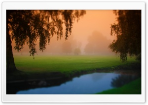 Park Morning Fog HD Wide Wallpaper for Widescreen