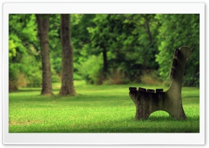 Park Spring HD Wide Wallpaper for Widescreen