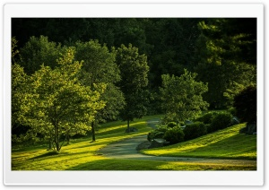 Park, Summer HD Wide Wallpaper for Widescreen