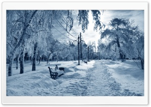 Park Under Snow Bench HD Wide Wallpaper for Widescreen