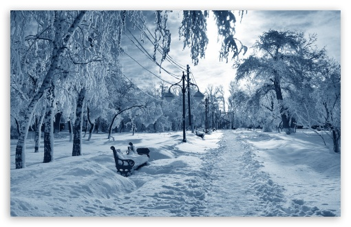 Park Under Snow Bench ❤ 4K UHD Wallpaper for Wide 16:10 5:3 Widescreen WHXGA WQXGA WUXGA WXGA WGA ; 4K UHD 16:9 Ultra High Definition 2160p 1440p 1080p 900p 720p ; Standard 4:3 5:4 3:2 Fullscreen UXGA XGA SVGA QSXGA SXGA DVGA HVGA HQVGA ( Apple PowerBook G4 iPhone 4 3G 3GS iPod Touch ) ; Smartphone 5:3 WGA ; Tablet 1:1 ; iPad 1/2/Mini ; Mobile 4:3 5:3 3:2 16:9 5:4 - UXGA XGA SVGA WGA DVGA HVGA HQVGA ( Apple PowerBook G4 iPhone 4 3G 3GS iPod Touch ) 2160p 1440p 1080p 900p 720p QSXGA SXGA ; Dual 16:10 5:3 16:9 4:3 5:4 WHXGA WQXGA WUXGA WXGA WGA 2160p 1440p 1080p 900p 720p UXGA XGA SVGA QSXGA SXGA ;