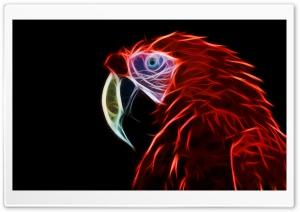 Parrot Ultra HD Wallpaper for 4K UHD Widescreen desktop, tablet & smartphone