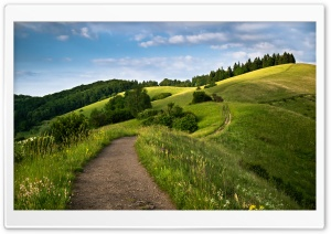 Path Hill HD Wide Wallpaper for Widescreen
