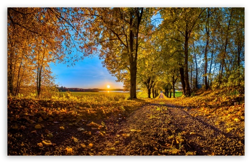 Pathway, Autumn ❤ 4K UHD Wallpaper for Wide 16:10 5:3 Widescreen WHXGA WQXGA WUXGA WXGA WGA ; UltraWide 21:9 24:10 ; 4K UHD 16:9 Ultra High Definition 2160p 1440p 1080p 900p 720p ; UHD 16:9 2160p 1440p 1080p 900p 720p ; Standard 4:3 5:4 3:2 Fullscreen UXGA XGA SVGA QSXGA SXGA DVGA HVGA HQVGA ( Apple PowerBook G4 iPhone 4 3G 3GS iPod Touch ) ; Smartphone 16:9 3:2 5:3 2160p 1440p 1080p 900p 720p DVGA HVGA HQVGA ( Apple PowerBook G4 iPhone 4 3G 3GS iPod Touch ) WGA ; Tablet 1:1 ; iPad 1/2/Mini ; Mobile 4:3 5:3 3:2 16:9 5:4 - UXGA XGA SVGA WGA DVGA HVGA HQVGA ( Apple PowerBook G4 iPhone 4 3G 3GS iPod Touch ) 2160p 1440p 1080p 900p 720p QSXGA SXGA ; Dual 16:10 5:3 16:9 4:3 5:4 3:2 WHXGA WQXGA WUXGA WXGA WGA 2160p 1440p 1080p 900p 720p UXGA XGA SVGA QSXGA SXGA DVGA HVGA HQVGA ( Apple PowerBook G4 iPhone 4 3G 3GS iPod Touch ) ; Triple 16:10 5:3 16:9 4:3 5:4 3:2 WHXGA WQXGA WUXGA WXGA WGA 2160p 1440p 1080p 900p 720p UXGA XGA SVGA QSXGA SXGA DVGA HVGA HQVGA ( Apple PowerBook G4 iPhone 4 3G 3GS iPod Touch ) ;