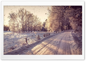 Pathway, Winter HD Wide Wallpaper for Widescreen