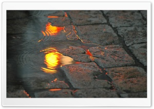 Pavement Puddle HD Wide Wallpaper for Widescreen