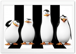 Penguins of Madagascar 2014 HD Wide Wallpaper for 4K UHD Widescreen desktop & smartphone