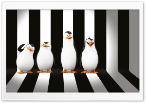 Penguins of Madagascar Movie Ultra HD Wallpaper for 4K UHD Widescreen desktop, tablet & smartphone