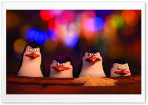 Penguins of Madagascar Movie HD Wide Wallpaper for 4K UHD Widescreen desktop & smartphone