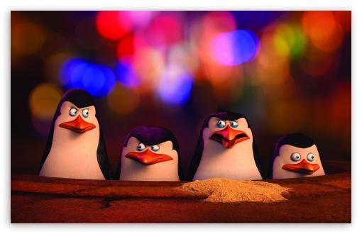 Penguins of Madagascar Movie UltraHD Wallpaper for Wide 16:10 5:3 Widescreen WHXGA WQXGA WUXGA WXGA WGA ; 8K UHD TV 16:9 Ultra High Definition 2160p 1440p 1080p 900p 720p ; UHD 16:9 2160p 1440p 1080p 900p 720p ; Standard 3:2 Fullscreen DVGA HVGA HQVGA ( Apple PowerBook G4 iPhone 4 3G 3GS iPod Touch ) ; Mobile 5:3 3:2 16:9 - WGA DVGA HVGA HQVGA ( Apple PowerBook G4 iPhone 4 3G 3GS iPod Touch ) 2160p 1440p 1080p 900p 720p ; Dual 16:10 5:3 16:9 4:3 5:4 WHXGA WQXGA WUXGA WXGA WGA 2160p 1440p 1080p 900p 720p UXGA XGA SVGA QSXGA SXGA ;