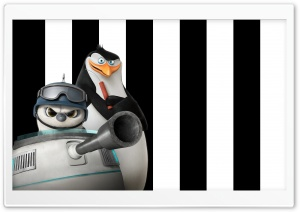 Penguins of Madagascar Rico and Short Fuse HD Wide Wallpaper for Widescreen