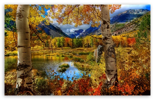 Perfect Autumn Scenery HD wallpaper for Wide 16:10 5:3 Widescreen WHXGA WQXGA WUXGA WXGA WGA ; HD 16:9 High Definition WQHD QWXGA 1080p 900p 720p QHD nHD ; Standard 4:3 5:4 3:2 Fullscreen UXGA XGA SVGA QSXGA SXGA DVGA HVGA HQVGA devices ( Apple PowerBook G4 iPhone 4 3G 3GS iPod Touch ) ; Tablet 1:1 ; iPad 1/2/Mini ; Mobile 4:3 5:3 3:2 16:9 5:4 - UXGA XGA SVGA WGA DVGA HVGA HQVGA devices ( Apple PowerBook G4 iPhone 4 3G 3GS iPod Touch ) WQHD QWXGA 1080p 900p 720p QHD nHD QSXGA SXGA ; Dual 16:10 5:3 4:3 WHXGA WQXGA WUXGA WXGA WGA UXGA XGA SVGA ;