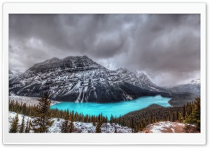 Peyto Lake, Canadian Rockies, Banff National Park HD Wide Wallpaper for 4K UHD Widescreen desktop & smartphone