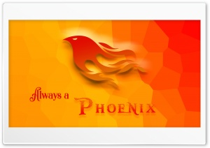 PHOENIX Ultra HD Wallpaper for 4K UHD Widescreen desktop, tablet & smartphone