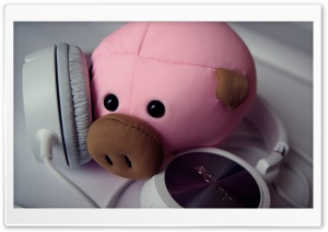 Pig and Headphones HD Wide Wallpaper for Widescreen