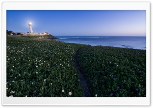 Pigeon Point Lighthouse HD Wide Wallpaper for Widescreen