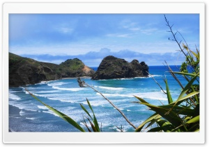 Piha Beach, New Zealand HD Wide Wallpaper for Widescreen