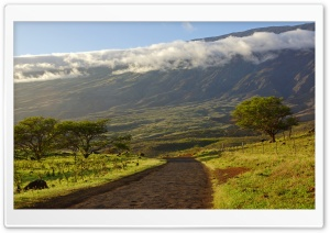 Piilani Highway, Maui, Hawaii HD Wide Wallpaper for Widescreen
