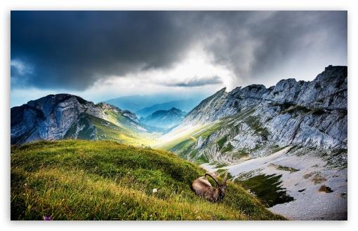 Pilatus mountain, Switzerland ❤ 4K UHD Wallpaper for Wide 16:10 5:3 Widescreen WHXGA WQXGA WUXGA WXGA WGA ; UltraWide 21:9 24:10 ; 4K UHD 16:9 Ultra High Definition 2160p 1440p 1080p 900p 720p ; UHD 16:9 2160p 1440p 1080p 900p 720p ; Standard 4:3 5:4 3:2 Fullscreen UXGA XGA SVGA QSXGA SXGA DVGA HVGA HQVGA ( Apple PowerBook G4 iPhone 4 3G 3GS iPod Touch ) ; Smartphone 16:9 3:2 5:3 2160p 1440p 1080p 900p 720p DVGA HVGA HQVGA ( Apple PowerBook G4 iPhone 4 3G 3GS iPod Touch ) WGA ; Tablet 1:1 ; iPad 1/2/Mini ; Mobile 4:3 5:3 3:2 16:9 5:4 - UXGA XGA SVGA WGA DVGA HVGA HQVGA ( Apple PowerBook G4 iPhone 4 3G 3GS iPod Touch ) 2160p 1440p 1080p 900p 720p QSXGA SXGA ; Dual 16:10 5:3 16:9 4:3 5:4 3:2 WHXGA WQXGA WUXGA WXGA WGA 2160p 1440p 1080p 900p 720p UXGA XGA SVGA QSXGA SXGA DVGA HVGA HQVGA ( Apple PowerBook G4 iPhone 4 3G 3GS iPod Touch ) ;