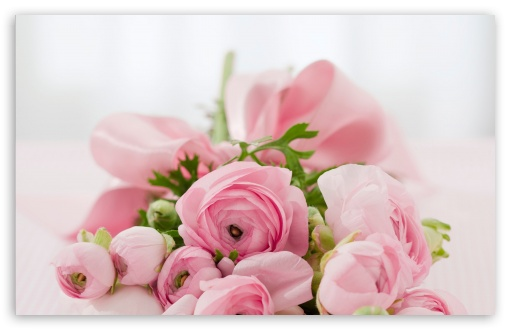 Pink Flowers Bridal Bouquet ❤ 4K UHD Wallpaper for Wide 16:10 5:3 Widescreen WHXGA WQXGA WUXGA WXGA WGA ; 4K UHD 16:9 Ultra High Definition 2160p 1440p 1080p 900p 720p ; Standard 4:3 5:4 3:2 Fullscreen UXGA XGA SVGA QSXGA SXGA DVGA HVGA HQVGA ( Apple PowerBook G4 iPhone 4 3G 3GS iPod Touch ) ; Smartphone 5:3 WGA ; Tablet 1:1 ; iPad 1/2/Mini ; Mobile 4:3 5:3 3:2 16:9 5:4 - UXGA XGA SVGA WGA DVGA HVGA HQVGA ( Apple PowerBook G4 iPhone 4 3G 3GS iPod Touch ) 2160p 1440p 1080p 900p 720p QSXGA SXGA ; Dual 16:10 5:3 16:9 4:3 5:4 WHXGA WQXGA WUXGA WXGA WGA 2160p 1440p 1080p 900p 720p UXGA XGA SVGA QSXGA SXGA ;