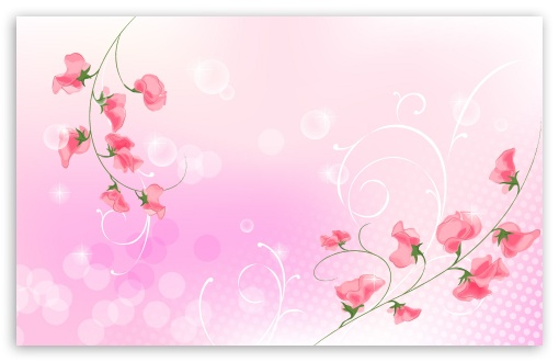 Pink Flowers Illustration ❤ 4K UHD Wallpaper for Wide 16:10 5:3 Widescreen WHXGA WQXGA WUXGA WXGA WGA ; 4K UHD 16:9 Ultra High Definition 2160p 1440p 1080p 900p 720p ; Standard 3:2 Fullscreen DVGA HVGA HQVGA ( Apple PowerBook G4 iPhone 4 3G 3GS iPod Touch ) ; iPad 1/2/Mini ; Mobile 4:3 5:3 3:2 16:9 - UXGA XGA SVGA WGA DVGA HVGA HQVGA ( Apple PowerBook G4 iPhone 4 3G 3GS iPod Touch ) 2160p 1440p 1080p 900p 720p ;