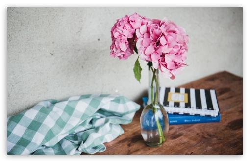 Pink Hydrangea Flowers in Vase, Table ❤ 4K UHD Wallpaper for Wide 16:10 5:3 Widescreen WHXGA WQXGA WUXGA WXGA WGA ; UltraWide 21:9 24:10 ; 4K UHD 16:9 Ultra High Definition 2160p 1440p 1080p 900p 720p ; UHD 16:9 2160p 1440p 1080p 900p 720p ; Standard 4:3 5:4 3:2 Fullscreen UXGA XGA SVGA QSXGA SXGA DVGA HVGA HQVGA ( Apple PowerBook G4 iPhone 4 3G 3GS iPod Touch ) ; Smartphone 16:9 3:2 5:3 2160p 1440p 1080p 900p 720p DVGA HVGA HQVGA ( Apple PowerBook G4 iPhone 4 3G 3GS iPod Touch ) WGA ; Tablet 1:1 ; iPad 1/2/Mini ; Mobile 4:3 5:3 3:2 16:9 5:4 - UXGA XGA SVGA WGA DVGA HVGA HQVGA ( Apple PowerBook G4 iPhone 4 3G 3GS iPod Touch ) 2160p 1440p 1080p 900p 720p QSXGA SXGA ; Dual 16:10 5:3 16:9 4:3 5:4 3:2 WHXGA WQXGA WUXGA WXGA WGA 2160p 1440p 1080p 900p 720p UXGA XGA SVGA QSXGA SXGA DVGA HVGA HQVGA ( Apple PowerBook G4 iPhone 4 3G 3GS iPod Touch ) ;