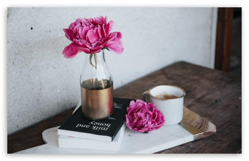 Pink Peony Flower, Books, Coffee Mug, Wooden Table ❤ 4K UHD Wallpaper for Wide 16:10 5:3 Widescreen WHXGA WQXGA WUXGA WXGA WGA ; 4K UHD 16:9 Ultra High Definition 2160p 1440p 1080p 900p 720p ; UHD 16:9 2160p 1440p 1080p 900p 720p ; Standard 4:3 5:4 3:2 Fullscreen UXGA XGA SVGA QSXGA SXGA DVGA HVGA HQVGA ( Apple PowerBook G4 iPhone 4 3G 3GS iPod Touch ) ; Smartphone 16:9 5:3 2160p 1440p 1080p 900p 720p WGA ; Tablet 1:1 ; iPad 1/2/Mini ; Mobile 4:3 5:3 3:2 16:9 5:4 - UXGA XGA SVGA WGA DVGA HVGA HQVGA ( Apple PowerBook G4 iPhone 4 3G 3GS iPod Touch ) 2160p 1440p 1080p 900p 720p QSXGA SXGA ;