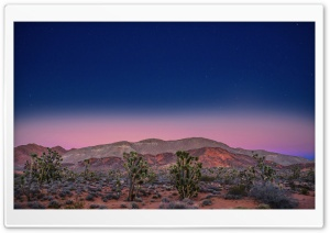 Pink Sunset, Desert Ultra HD Wallpaper for 4K UHD Widescreen desktop, tablet & smartphone