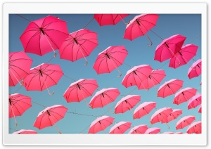 Pink Umbrellas Ultra HD Wallpaper for 4K UHD Widescreen desktop, tablet & smartphone