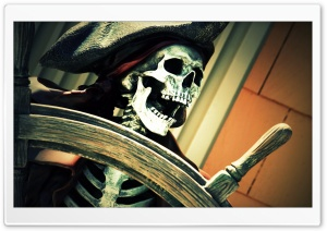 Pirate On Board HD Wide Wallpaper for Widescreen