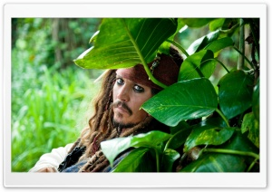 Pirates Of The Caribbean On Stranger Tides, Johnny Depp HD Wide Wallpaper for Widescreen