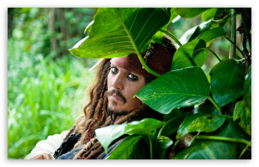 Pirates Of The Caribbean On Stranger Tides, Johnny Depp ❤ 4K UHD Wallpaper for Wide 16:10 5:3 Widescreen WHXGA WQXGA WUXGA WXGA WGA ; 4K UHD 16:9 Ultra High Definition 2160p 1440p 1080p 900p 720p ; UHD 16:9 2160p 1440p 1080p 900p 720p ; Standard 4:3 5:4 3:2 Fullscreen UXGA XGA SVGA QSXGA SXGA DVGA HVGA HQVGA ( Apple PowerBook G4 iPhone 4 3G 3GS iPod Touch ) ; Tablet 1:1 ; iPad 1/2/Mini ; Mobile 4:3 5:3 3:2 16:9 5:4 - UXGA XGA SVGA WGA DVGA HVGA HQVGA ( Apple PowerBook G4 iPhone 4 3G 3GS iPod Touch ) 2160p 1440p 1080p 900p 720p QSXGA SXGA ; Dual 5:4 QSXGA SXGA ;