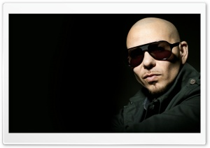 Pitbull HD Wide Wallpaper for Widescreen