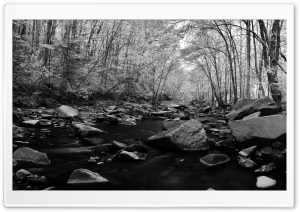 Pohick Creek Black And White HD Wide Wallpaper for 4K UHD Widescreen desktop & smartphone