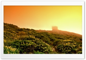 Point Reyes In The Fog HD Wide Wallpaper for 4K UHD Widescreen desktop & smartphone