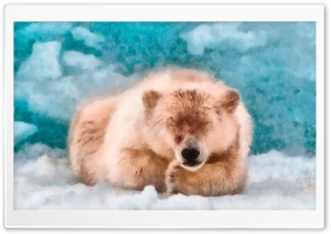 Polar Bear Sleeping DAP Watercolor HD Wide Wallpaper for Widescreen