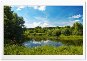 Pond In Summer HD Wide Wallpaper for Widescreen