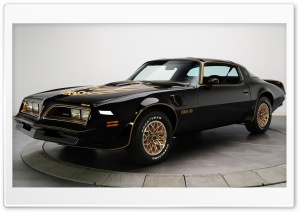 Pontiac Firebird Trans Am 1978 HD Wide Wallpaper for 4K UHD Widescreen desktop & smartphone