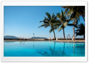 Pool And Palm Trees HD Wide Wallpaper for Widescreen