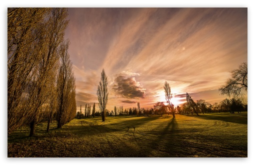 Poplars In The Sunset ❤ 4K UHD Wallpaper for Wide 16:10 5:3 Widescreen WHXGA WQXGA WUXGA WXGA WGA ; 4K UHD 16:9 Ultra High Definition 2160p 1440p 1080p 900p 720p ; Standard 4:3 5:4 3:2 Fullscreen UXGA XGA SVGA QSXGA SXGA DVGA HVGA HQVGA ( Apple PowerBook G4 iPhone 4 3G 3GS iPod Touch ) ; Tablet 1:1 ; iPad 1/2/Mini ; Mobile 4:3 5:3 3:2 16:9 5:4 - UXGA XGA SVGA WGA DVGA HVGA HQVGA ( Apple PowerBook G4 iPhone 4 3G 3GS iPod Touch ) 2160p 1440p 1080p 900p 720p QSXGA SXGA ;