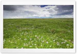 Prairie HD Wide Wallpaper for Widescreen